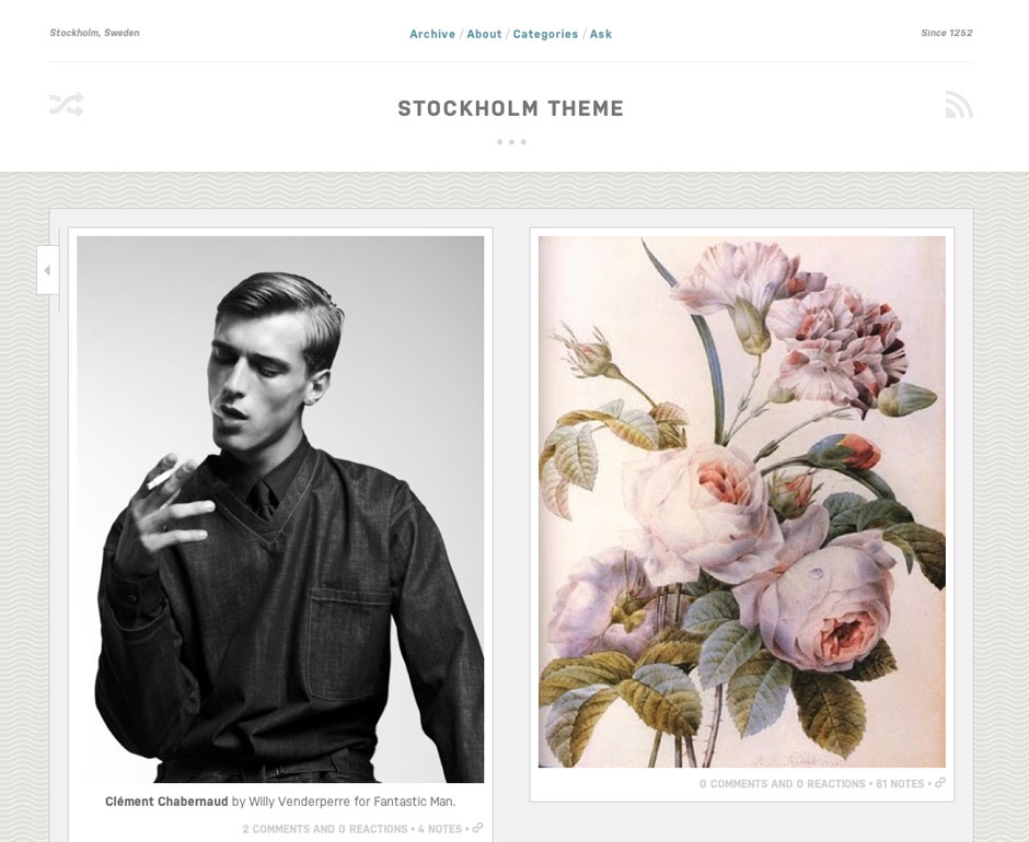 Tumblr and Shopify themes